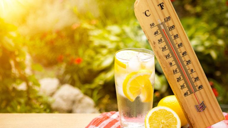 Ամռան ամիսներին բարձրանում է վարակիչ հիվանդությունների և սննդային թունավորումների առաջացման և տարածման վտանգը
